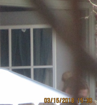 man hiding inside as woman looks where I am in my own back yard