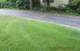 parking on grass to target in home last night tall grass bent down from weight of car