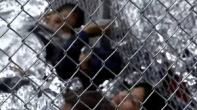 children internment centers paid for with tax dollars