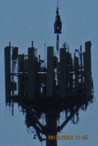 man working on microwave tower across from Library Center in Springfield, MO