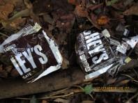 someone behind fence feeding my dogs chocolate to kill them