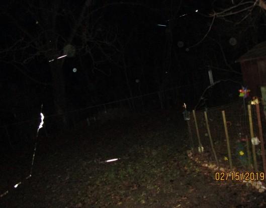 odd light streaks by friend's garden 2-15-19