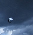 original photo's large UFO.jpg