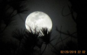 supermoon day after full.jpg
